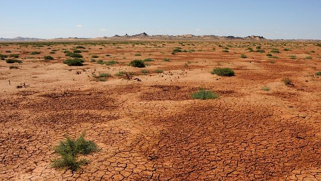 mongolská poušť